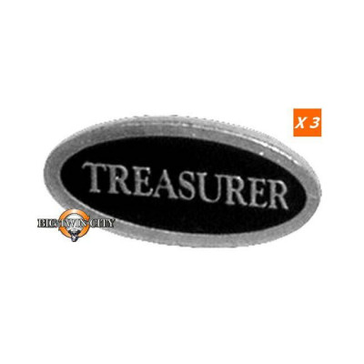 PINS TREASURER