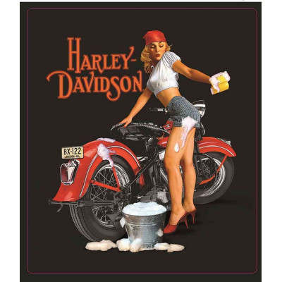 Plaque Métal Emboutie Harley Davidson Pin-Up Wash