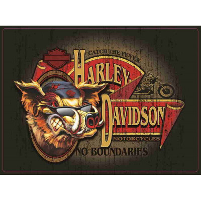 PLAQUES EMBOUTIES HARLEY DAVIDSON NO BOUNDARIES