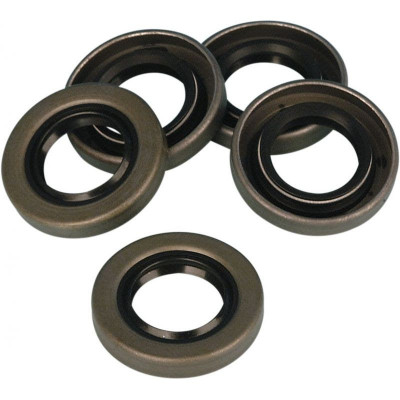 Oil Seal Generator Gear End