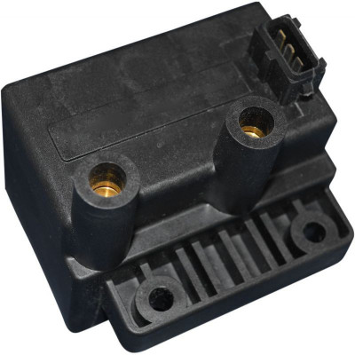 Dual-fire Ignition Coil Black