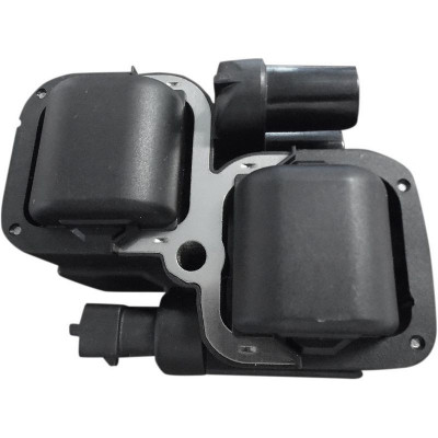 Ignition Coil Indian Black